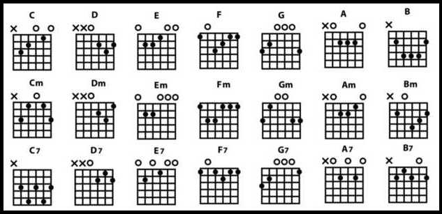 Guitare : Guide placement des doigts
